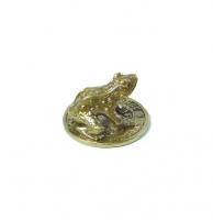 Кошельковая Жаба на монете